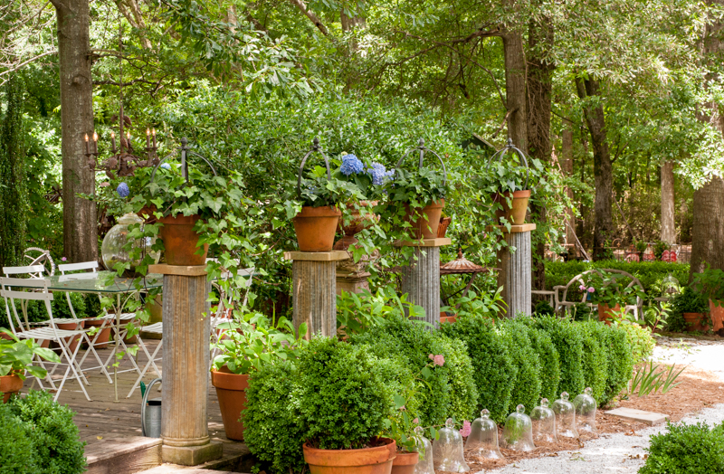 Gardening festival hydrangea festival events for Garden design fest 2014
